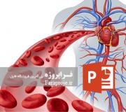 پاورپوینت گردش خون