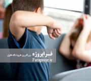مقاله بررسی عوامل پرخاشگری و مشكلات دانش آموزان پرخاشگر و ارائه راه حلهای مناسب برای بهبود رفتار آنان