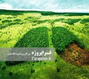 مقاله اثر افزایش جمعیت بر محیط زیست
