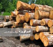 مقاله درباره چوب